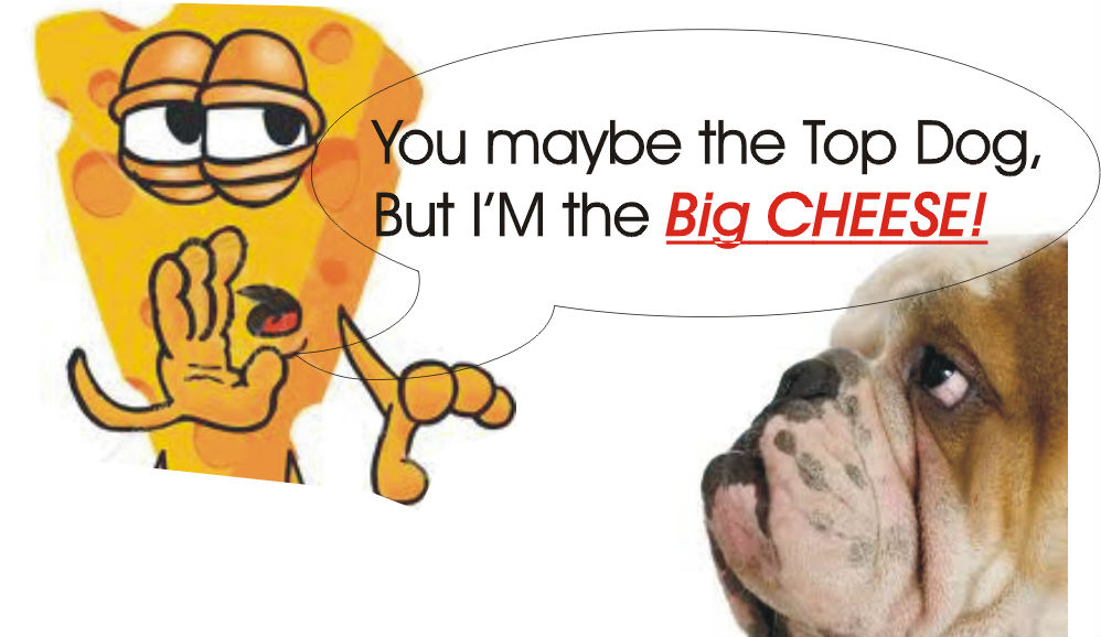 top dog big cheese
